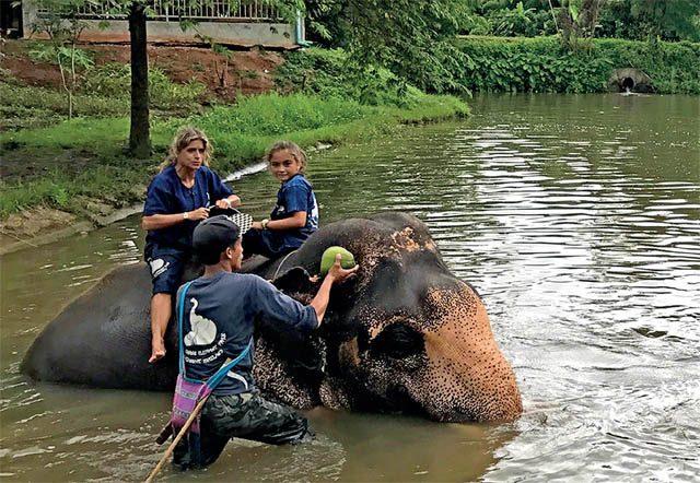 Baan Chang Elephant Camp