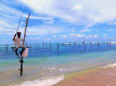 Pescadores zancudos en Galle