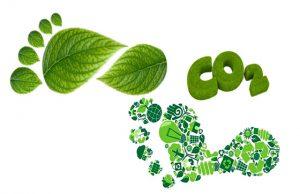 BCD Travel BCD m&e neutralizan huella de carbono