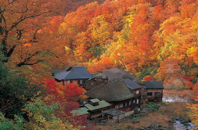 Baños termales Kuroyu Onsen_Senboku_ prefectura Akita
